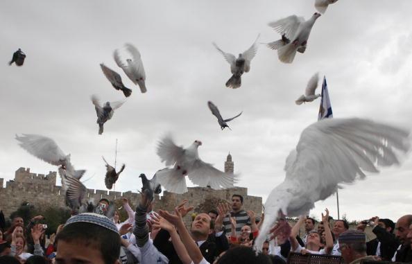 Дети вместе с мэром Иерусалима выпускают голубей в поддержку схваченного террористами Хамас израильского солдата. Он был взят в плен в то время, когда члены Хамас напали на израильский блокпост. Фото: GALI TIBBON/AFP/Getty Images