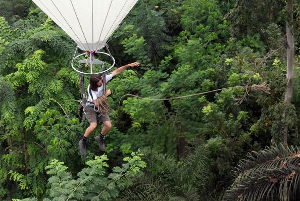 Eden - найбільша оранжерея в світі. Фото: Matt Cardy / Getty Images