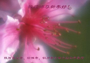 Все ученики Фалуньгун г.Вэйфан провинции Шаньдун поздравляют уважаемого Учителя с Новым годом!