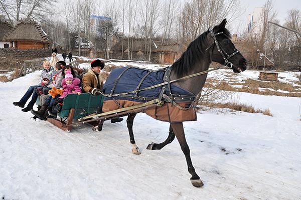 Повозка колесящая по казацкому посёлку. Фото: Владимир Бородин/The Epoch Times Украина