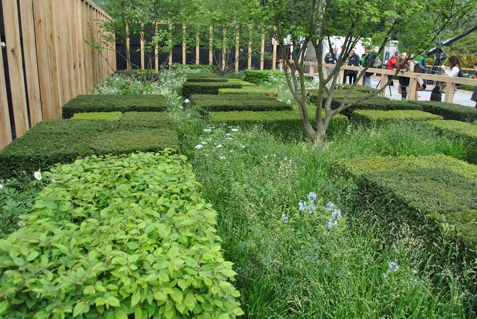 Сад «Daily Telegraph» на выставке цветов в Челси как напоминание о «живых изгородях», охранявших дом в сельской местности от дикой растительности. Фото: rhschelsea/facebook.com