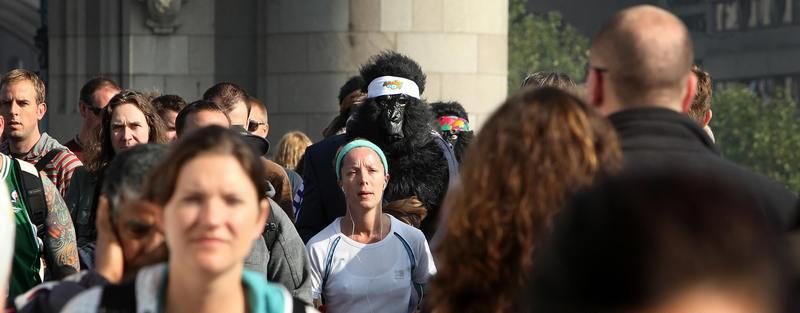 «Великий забіг горил» у Лондоні. Фото: Leon Neal/AFP/Getty Images