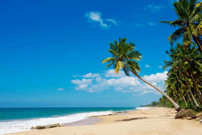 Пляж на Шрі-Ланці — теплий океан, золотий пісок і пальми. Фото: Star Tour77/Flickr