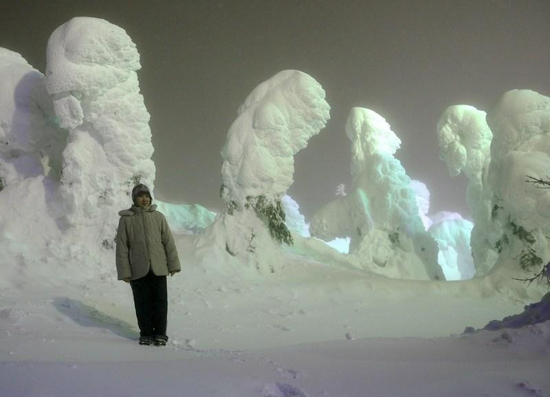Дерева в снігу, які штучно підсвічуються. Фото: Koichi Kamoshida/Getty Images News