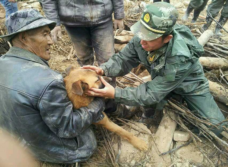 Уезд Миньсянь, Китай, 25 июля. Спасатели освобождают собаку, пролежавшую под развалинами 77 часов. Землетрясение силой 6,6 баллов (22 июля) уничтожило пятую часть всех построек в уезде. Фото: ChinaFotoPress/ChinaFotoPress via Getty Images