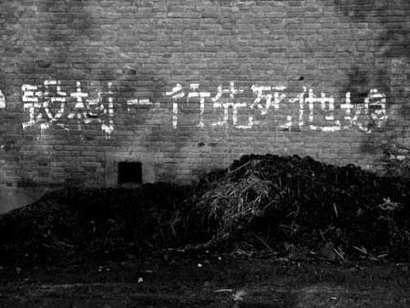 «Хто зрубає ряд дерев, помре його мати»