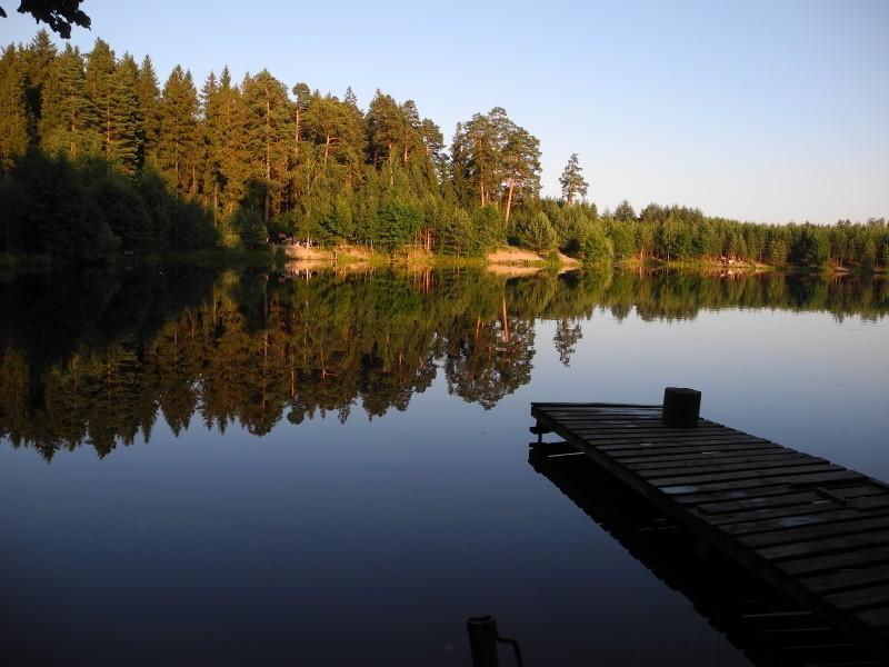 Лесное озеро в Киржаче. Фото: Алла Лавриненко