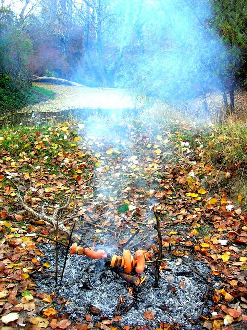 Осень под Севастополем. Фото: Алла Лавриненко