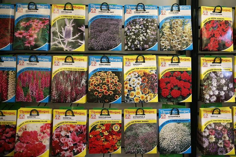 У магазині ботанічного саду можна придбати насіння квітів. Фото: Dan Kitwood/Getty Images