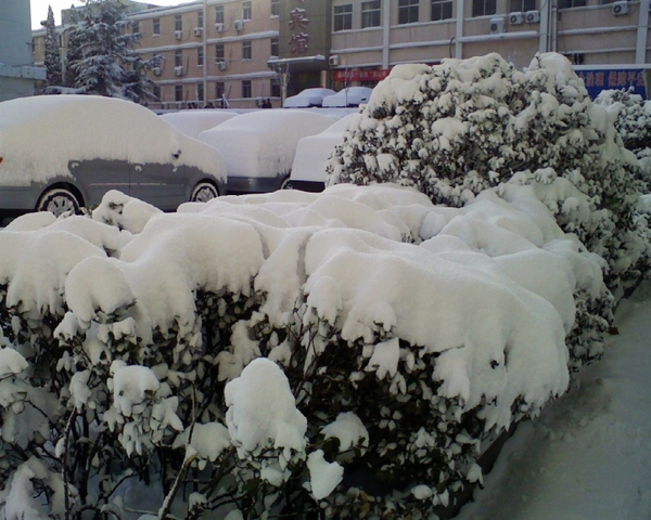 В городе Янтай провинции Шаньдун количество выпавших осадков снега превысило 20 см. Фото с epochtimes.com