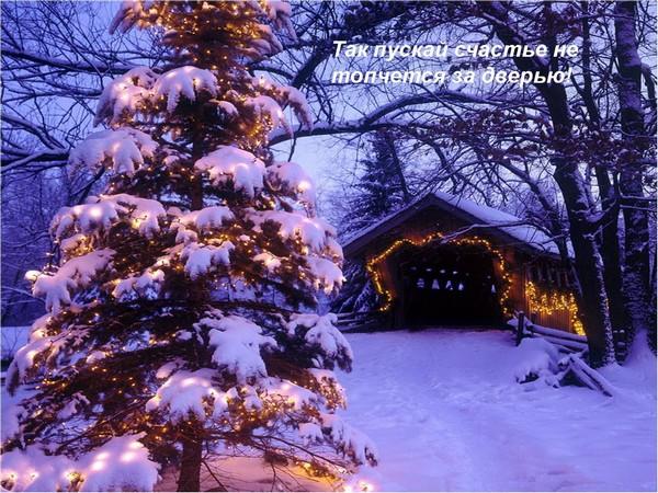 Поздравление с Новым 2010 годом Тигра. Фото: pixdaus.com