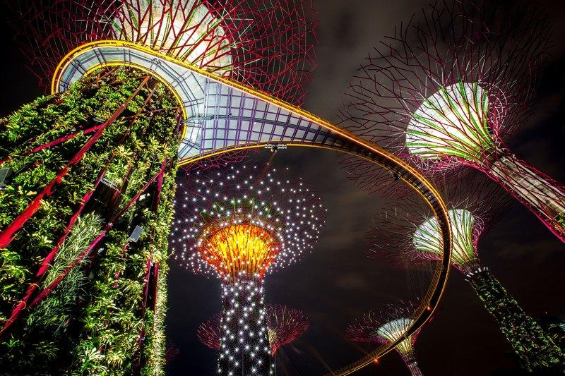 Сінгапур, 2 липня. Південна частина ботанічного комплексу «Сад біля затоки» відкрита для відвідування. На площі в 54 гектарів розміщені понад 220 тис. рослин. Фото: Chris McGrath/Getty Images