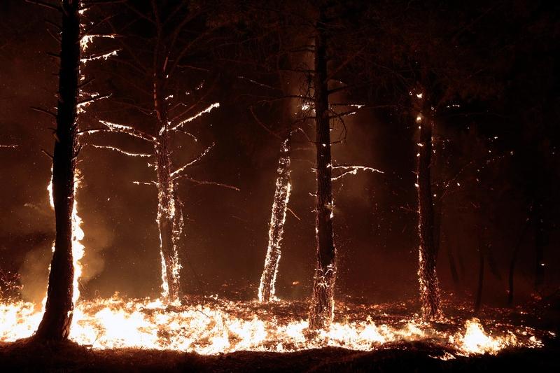 Леон, Испания. 21 августа. Вследствие изнуряющей жары по всей Испании вспыхнули многочисленные лесные пожары, прибавив забот властям на фоне продолжающегося кризиса. Фото: CESAR MANSO/AFP/GettyImages