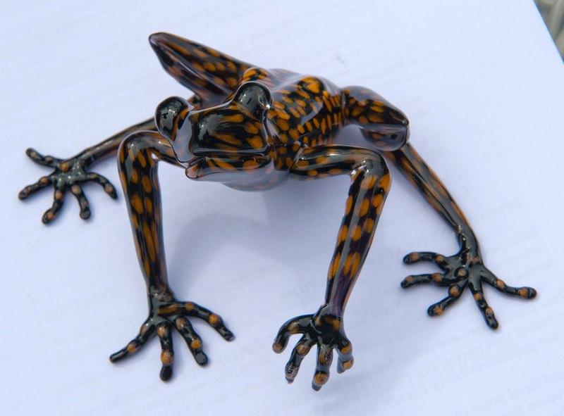 Тетбері, Англія, 5 липня. Деревну жабу, виявлену 4 роки тому в Еквадорі, назвали ім'ям принца Чарльза на знак його заслуг зі збереження тропічних лісів. Фото: Arthur Edwards — WPA Pool/Getty Images