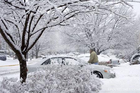 Засніжені дерева і машини. Фото: Чан Лей/Велика Епоха