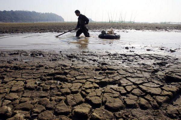 62% водоёмов в Китае из-за сильного загрязнения воды, не пригодны для жизни рыб. Фото: China Photos/Getty Images
