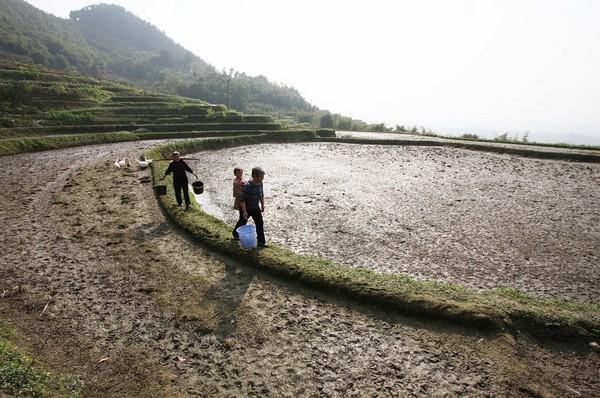 Крестьяне пришли за водой к ещё не полностью высохшему озеру. Провинция Сычуань. 21 марта 2010 год. Фото: STR/AFP/Getty Images