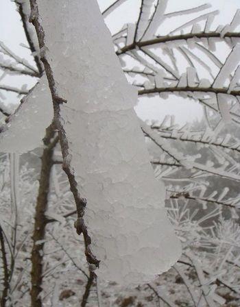 Сильный снег со льдом прошли в провинции Гуйчжоу. Фото с epochtimes.com