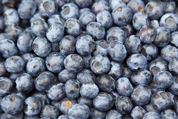 Пища голубого цвета обладает антисептическим, антибактериальным и антигрибковым действием, помогает при болезнях горла. Фото: MICHAEL URBAN/AFP/Getty Images