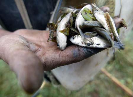 Рыбак показывает, какую рыбу он поймал в озере Дунтин. Фото: Frederic J. Brown/AFP/Getty Images