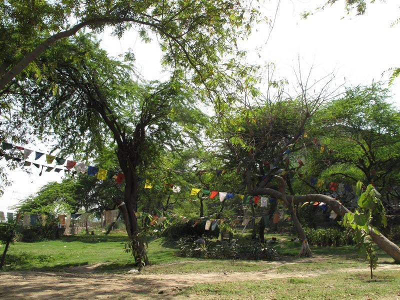 Парк із тибетськими прапорцями, місто Делі, Індія. Фото: Ігор Борзаковський/Велика Епоха