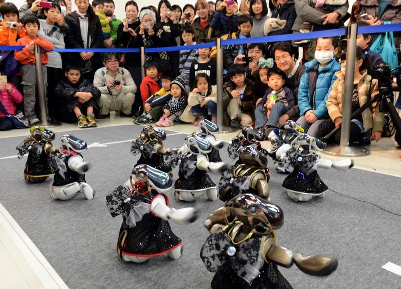 Йокогама, Японія, 27січня. Роботи-собаки «Айбо» танцюють на чемпіонаті роботів-спортсменів. Фото: TOSHIFUMI KITAMURA/AFP/Getty Images