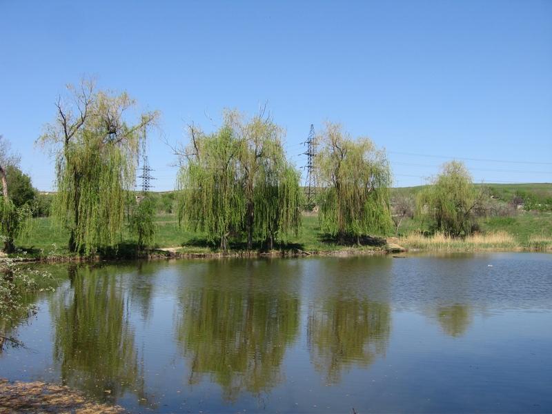 Олексієво-Дружківський ставок, розташований в 15-хвилинах від кар'єру. Фото: Мілостнова Росіна/The Epoch Times Україна