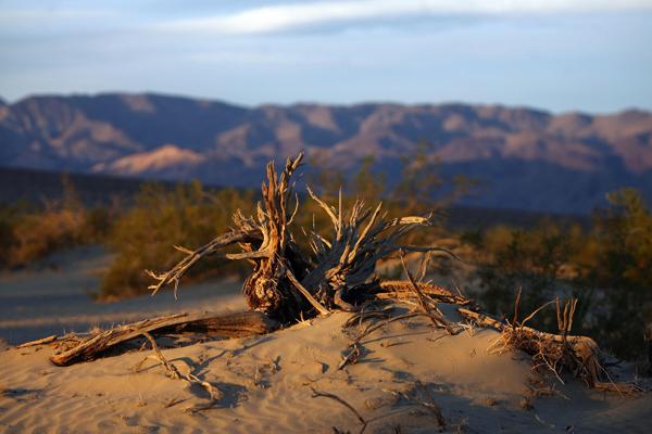 Безжизненность Долины Смерти зачаровывает, и человек выглядит бессильным и беззащитным в покорении этой дикой природы. Фото: GABRIEL BOUYS/AFP/Getty Images