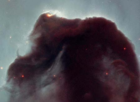 24 апреля 2001 г. Туманность Конская голова. Фото: NASA, NOAO, ESA and The Hubble Heritage Team (STScI/AURA)