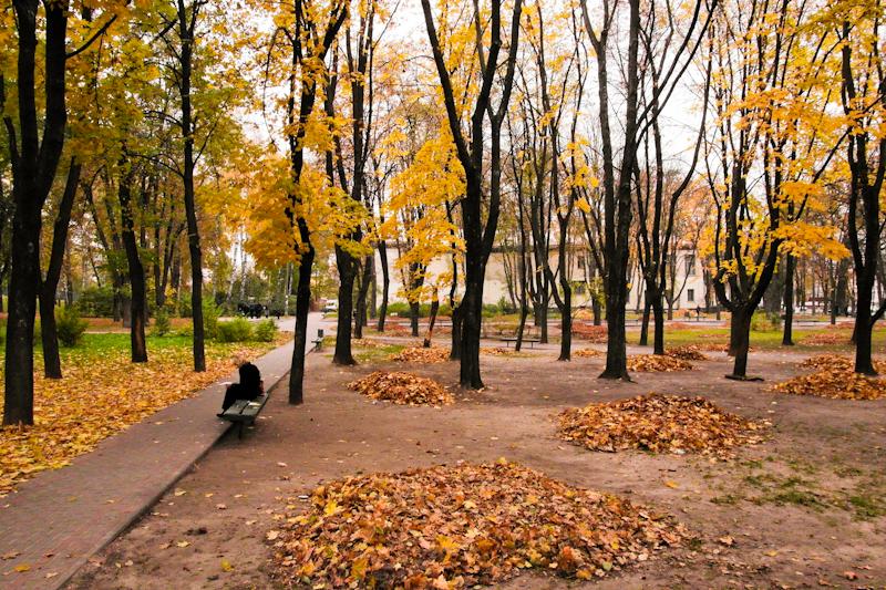 Золота осінь 2011. Фото: Володимир Бородін/The Epoch Times Україна