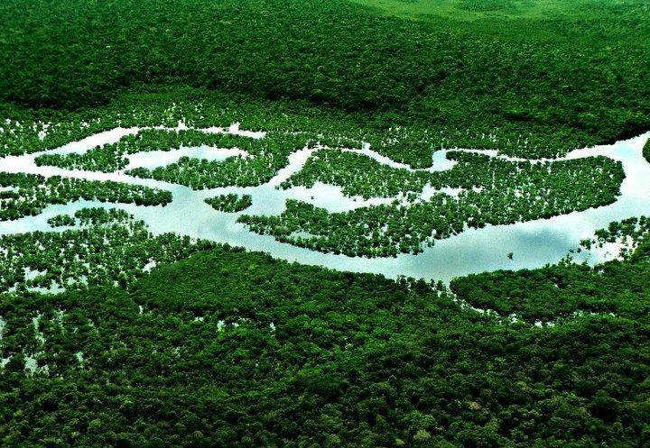 Найдовша річка у світі — Амазонка. Фото: Eduardo Rizzo/The Epoch Times En Espanol