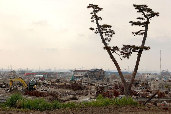 Разрушенный г. Сендай, префектура Мияги. Фото: Kiyoshi Ota/Getty Images