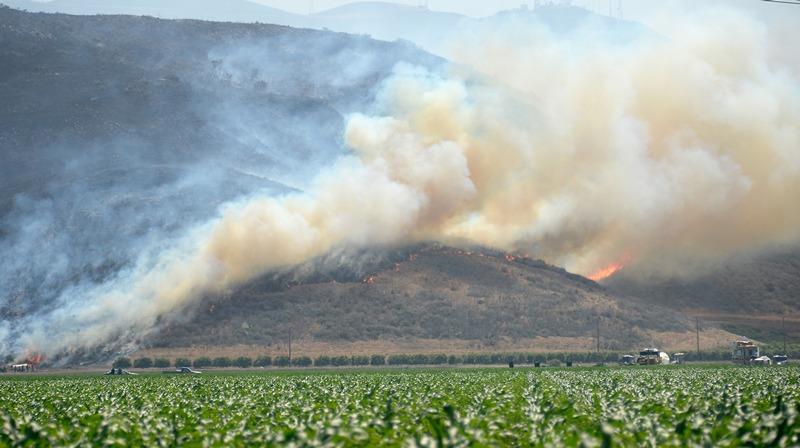Камарильо, США, 2 мая. Лесные пожары, охватившие свыше 6000 акров в Калифорнии, подбираются к полям фермеров. Фото: Kevork Djansezian/Getty Images