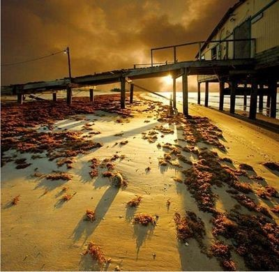 Мир, отраженный в объективе. Фото с aboluowang.com