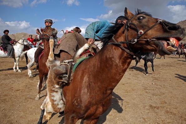 Афганский всадник соревнуется за шкуру козы. Это древняя игра, называемая Бузкаши является национальным видом спорта в Афганистане. Всадники поделены на две команды, играют в поле. Каждая команда пытается захватить и удерживать шкуру козы. Кабул, Афгани