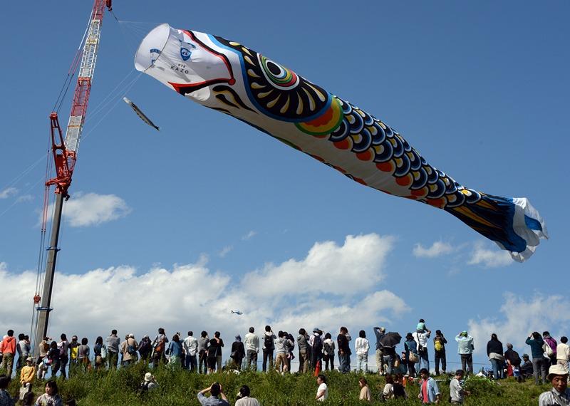 Кадзо, Япония, 3 мая. Огромный «летающий карп» развевается над рекой Тоне. Его длина 100 метров, а вес 350 кг. 5 мая в стране отметят День мальчиков. Фото: TOSHIFUMI KITAMURA/AFP/Getty Images