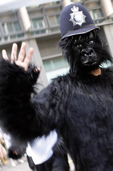 «Великий забіг горил» у Лондоні. Фото: JOHN D MCHUGH/AFP/Getty Images