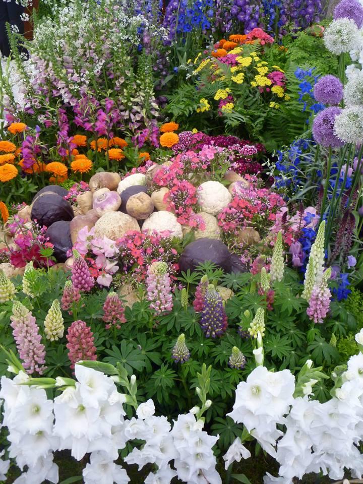 Взгляд в прошлое. Выставка растений от компании «Kelways Plants», которые были популярны в 1913-м году. Фото: rhschelsea/facebook.com