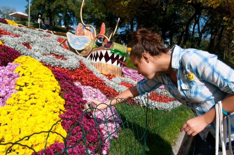 В Киеве открылась выставка императорских хризантем. Фото: Владимир Бородин / Великая Эпоха