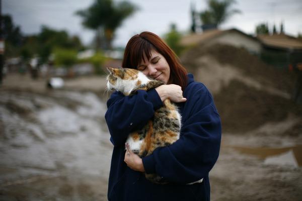 Калифорнию накрыло стихийное бедствие. Фото: Eric Thayer/Getty Images