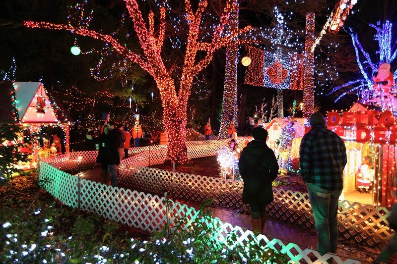 Ванкувер, Канада, 17 декабря. Перед новогодьем около миллиона лампочек разукрасили парк Стэнли разноцветными огнями. Фото: Cameron Spencer/Getty Images