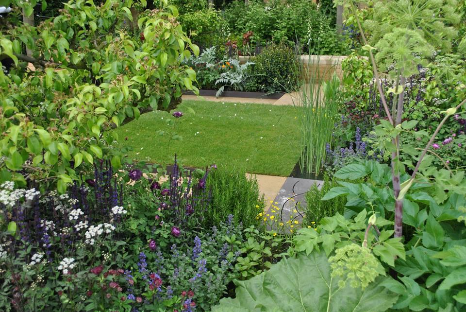 Сад для семьи «Посев семян перемен» на выставке цветов в Челси. Это пространство для получения удовольствия от общения с природой. Фото: rhschelsea/facebook.com