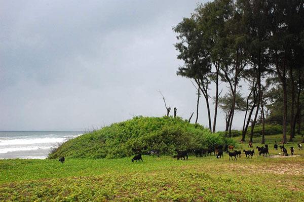 Гоа - самый маленький штат Индии. Фото: e-x.com.ua