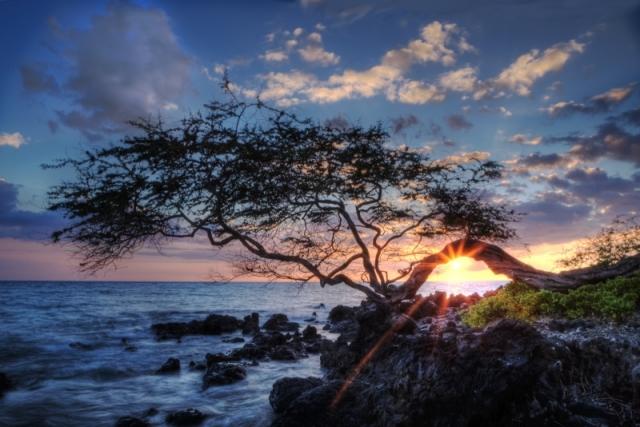 Вечер на берегу острова Гавайи. Город Каилуа-Кона, штат Гавайи. Фото: Melody Revnak/outdoorphotographer.com