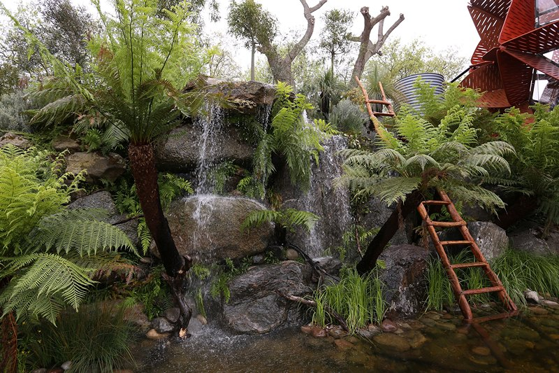 Австралийский сад «Trailfinders Australian Garden» — лучший сад на выставке цветов в Челси. Фото: Tim P. Whitby/Getty Images for the 2013 Chelsea Flower Show Trailfinders Australian Garden