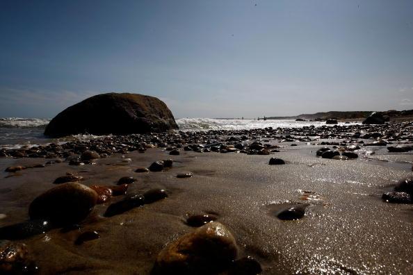 Пляж. Фото: Win McNamee/Getty Images