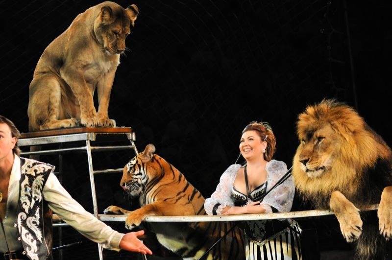 Національний цирк України представив нову програму «Просто супер» з хижими звірами 22 вересня 2011 року. Фото: Володимир Бородін/The Epoch Times Україна
