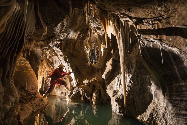 Очарование пещеры Нетлбед. Национальный парк Кахуранги, Новая Зеландия. Фото: Mark Watson/travel.nationalgeographic.com