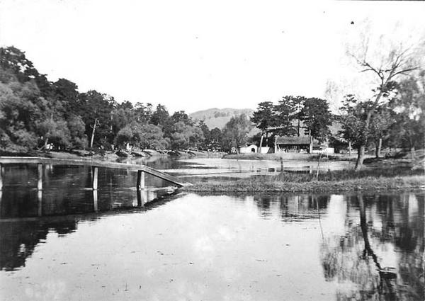 Затока реки. Фото: William Purdom