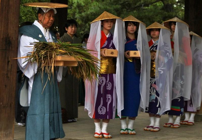 Осака, Японія, 17жовтня. Церемонія внесення до синтоїстського храму колосків священного рису відкриває сезон збору урожаю рису. Ця церемонія проводиться протягом 1800років. Фото: Buddhika Weerasinghe/Getty Images